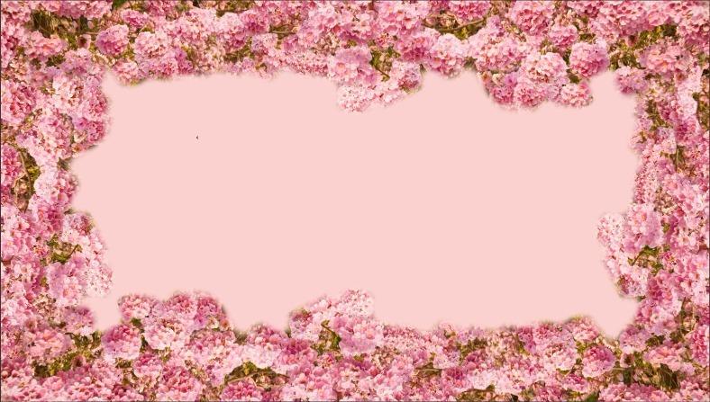 Painel De Festa Floresta Florida Fundo Rosa 300x170cm R 13990 Em