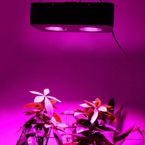 painel de led cob 500w grow cultivo indoor