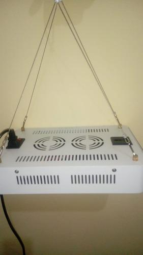 painel de led grow indoor 1000w full spectrum