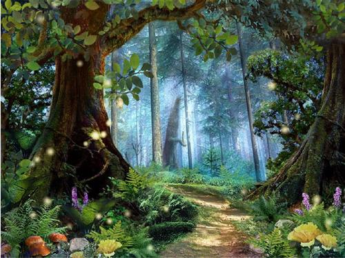 Painel Floresta Encantada 300 X 170 Multi Escolha R