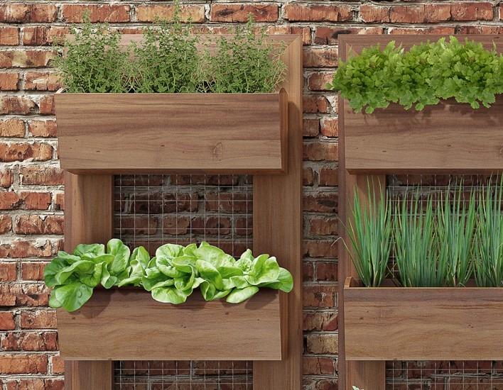 horta e jardim vertical : horta e jardim vertical:Painel Horta Vertical Suspensa 100cm X 55cm Jardim Olilo – R$ 546,00