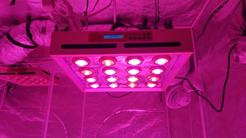 painel led grow sun g5 cultivo indoor 320w profissional