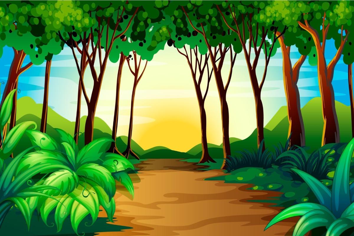 Painel Lona Floresta Selva Desenho Decoracao Festa Infantil R