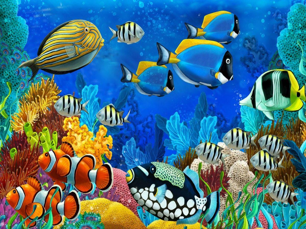 Painel Lona Fundo Do Mar Peixes Coloridos 2x1 50 M R 78