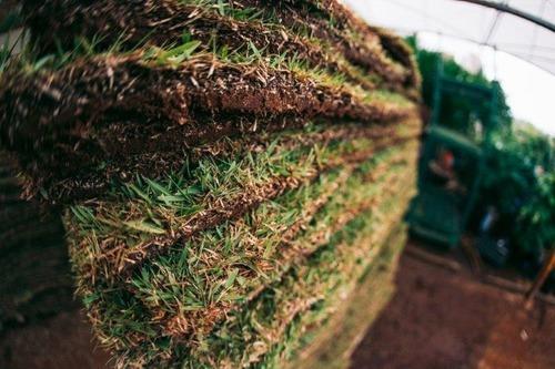 paisagismo em geral / ítens para jardim e manutenções