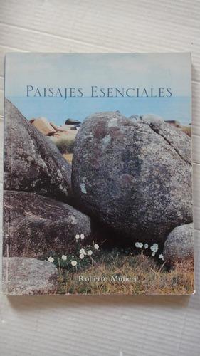 paisajes esenciales roberto mulieri