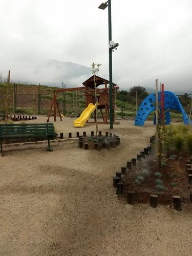 paisajismo, construcción jardines