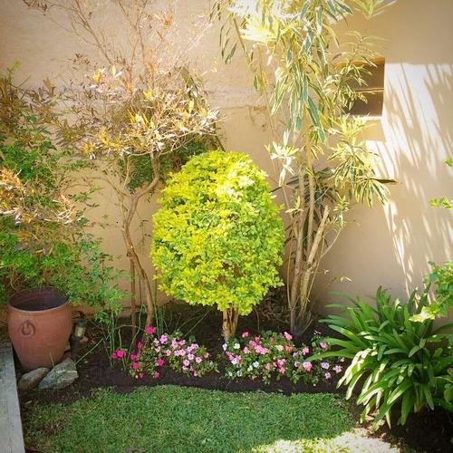 paisajismo - jardinería - huerta orgánica - orquídeas