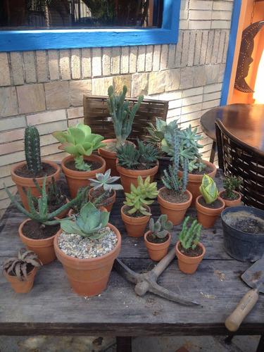 paisajismo, jardineria, mantenimiento, plantas grama y riego