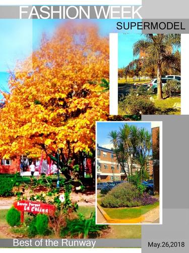 paisajismo, mantenimiento, jardinería,