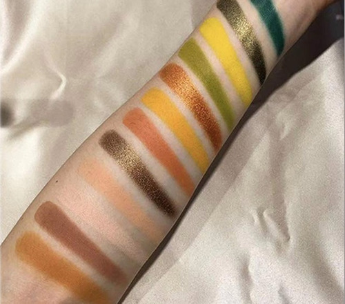 paleta de sombras profesionales de 63 colores