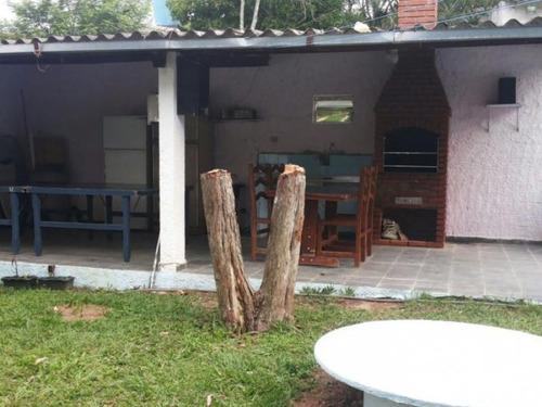 palmeiras - 1345