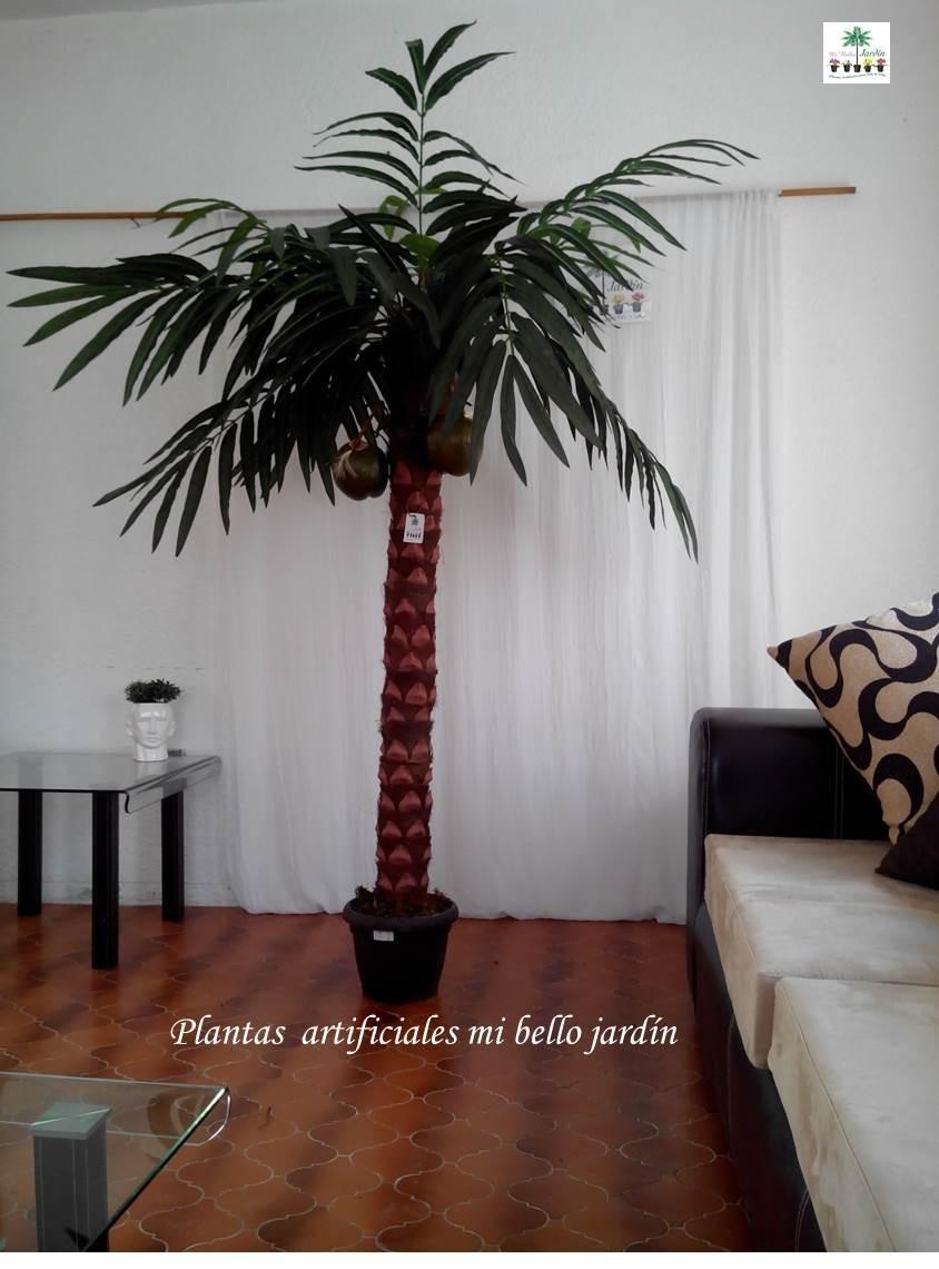 Palmeras hojas y plantas decorativas maa 3 en for Palmeras decorativas exterior