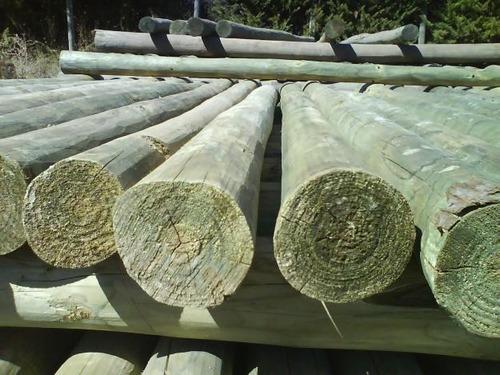 palo curado de eucaliptus 9 a 12 cm x 2,50 mt madera tratada
