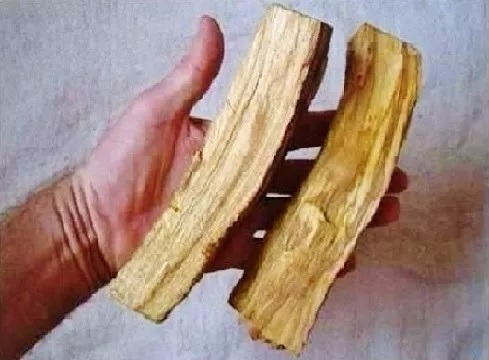 palo santo - incenso andino - 1 quilo