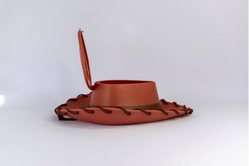 palomera sombrero woody cinemex toy story 4 sellado