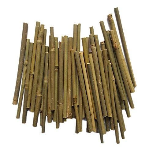 Palos De Bambu 5 Pulgadas De Largo Pulgadas De Diametro P - Palos-de-bambu