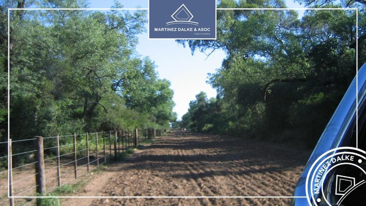 pampa del indio - 279 has. campo con siembra directa de soja