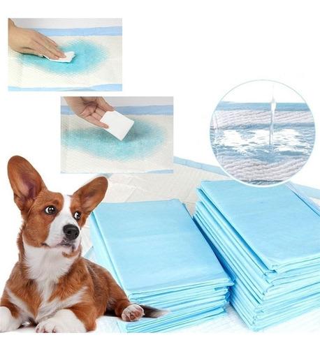 pañales para piso para perros (pack x 50 un.)