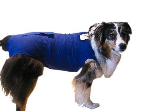 pañalescamisa surgi snuggly para perro azul ms ..