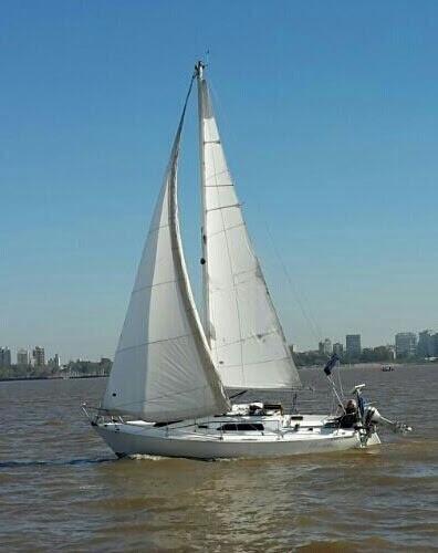 pandora 23 - velero - patricio marcos