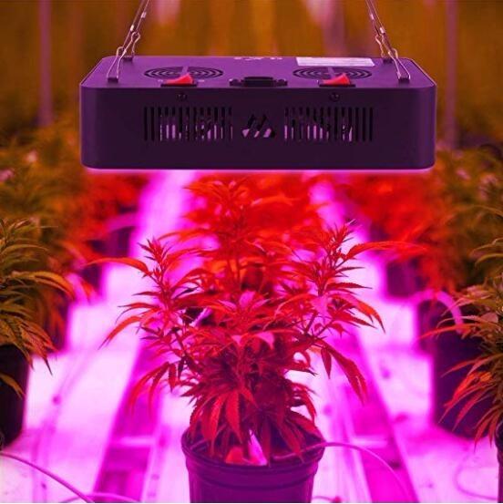 Panel Foco Led Indoor Cultivo Interior 600w(potencia)2 Fases