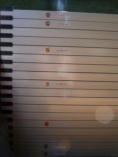 panel solar 250 w