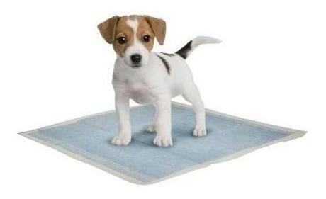 paños entrenamiento perros 20 unidades discovery pet 60x60