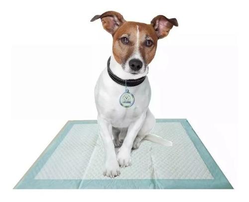 paños sanitarios entrenamiento adiestramiento perro 100 unid