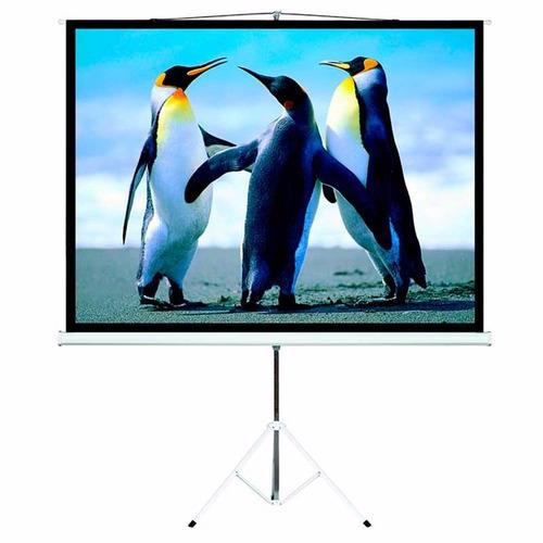 pantalla proyector con tripode 120 pulgadas intelaid tps120