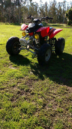 panther wr 250 2011