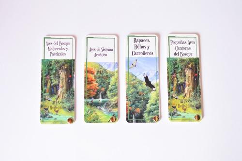 pantoneras: aves del bosque húmedo templado patagónico