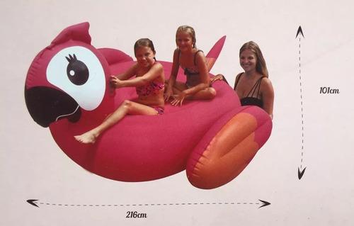 papagaio inflável gigante adulto piscina praia lagoa