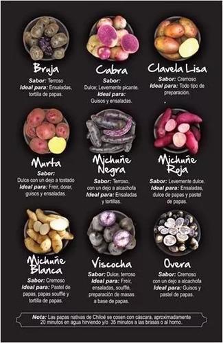 papas nativas chilotas organicas