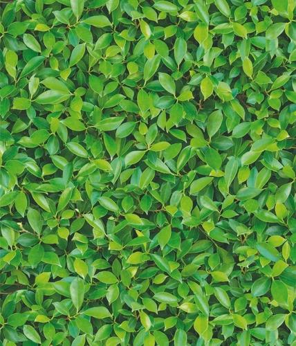 papel muresco vinilizado zen 3480-1 hojas verdes