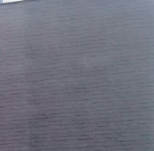 papel tapiz de importación