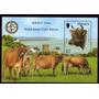 Vacas Raza Jersey De Ganaderia En Sello - Lámina 45x30 Cm.