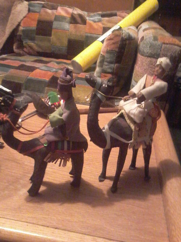 par de camellos de piel