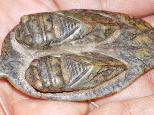par de cigarras de jade antiguo no prehispanicas