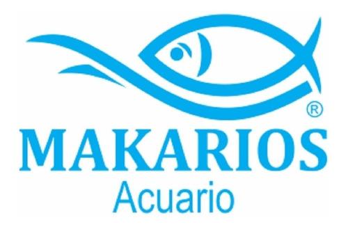 para acuario peces