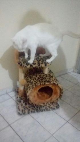 para gatos arranhador