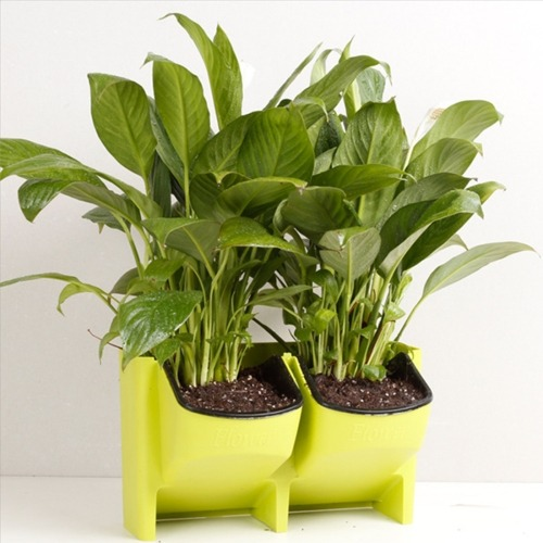 Para Hogar Jardineria Maceta Jardinera Planta Pared Aire - $ 51.041 ...