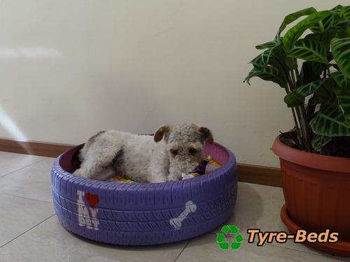 para mascotas camas