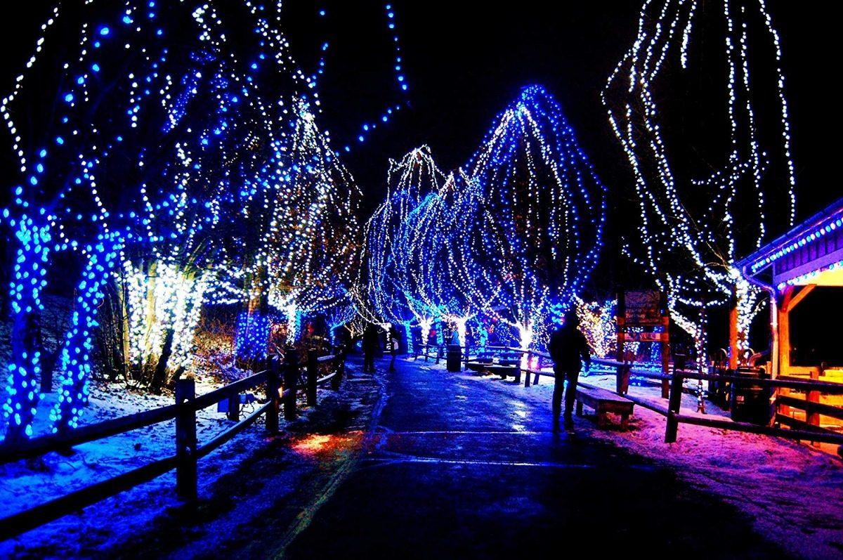 7a130e551f3 Cargando zoom... 2 200 luces led moradas para arbol de navidad autolizer