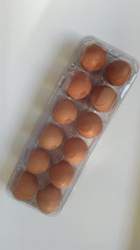 para ovos embalagem