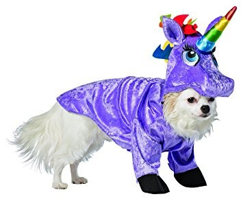 para perro perro