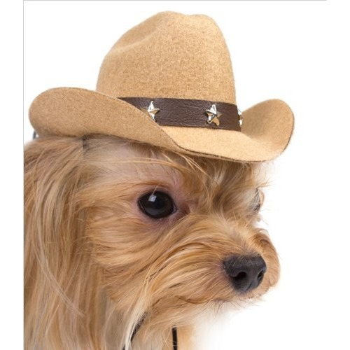 96112e9e797af Sombrero Para Perro Perro Del Sombrero De Vaquero