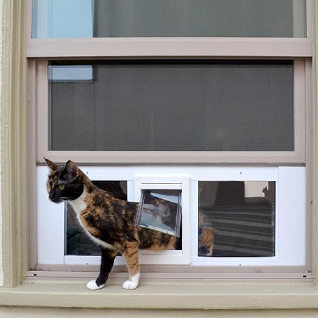 Puerta De Acceso Chica Mosquitero Para Gato 211 Perro