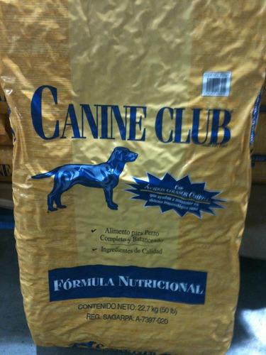 para perros adultos alimento para perro