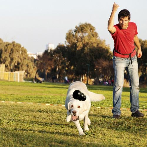 para perros juguete